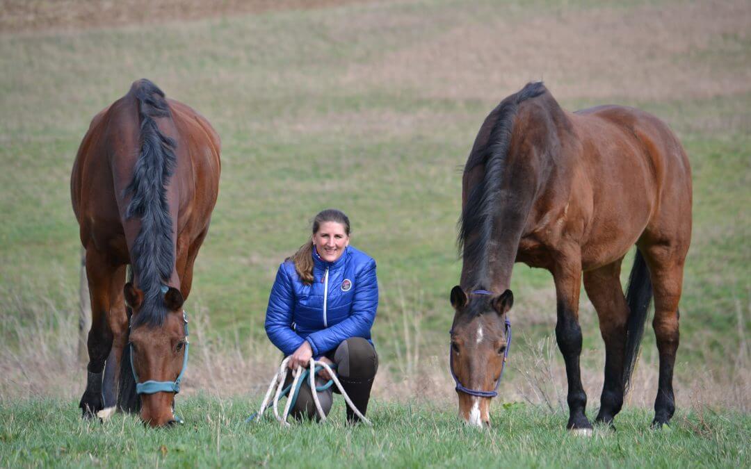 Gastbeitrag von Claudia Grajek zum Thema pferdegstütztes Coaching